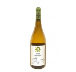 Vinho Branco Quinta de Carvalhiços 2019